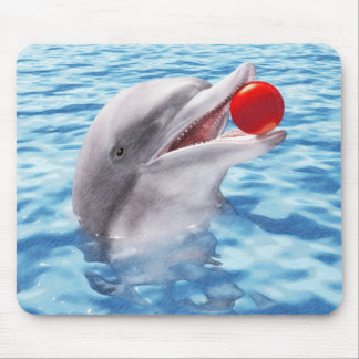 Dolphin Play Ball Mouse Pad