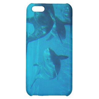 Dolphin Play iPhone Case iPhone 5C Cover