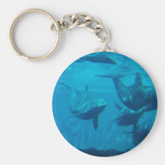 Dolphin Play Keychain