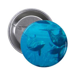 Dolphin Play Pin