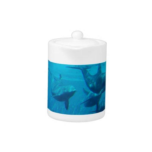 Dolphin Play Teapot