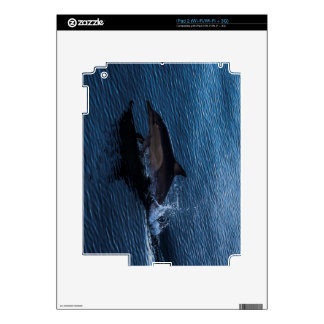 Dolphin Playing off Surfers Paradise iPad 2 Decal