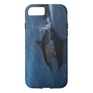 Dolphin Playing off Surfers Paradise iPhone 7 Case