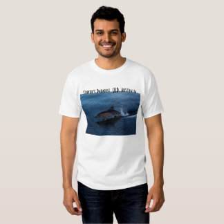 Dolphin Playing off Surfers Paradise T Shirt