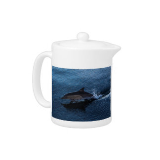 Dolphin Playing off Surfers Paradise Teapot