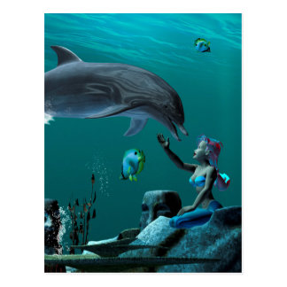 Dolphin playing postcard