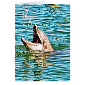 Dolphin Playing with Water Card