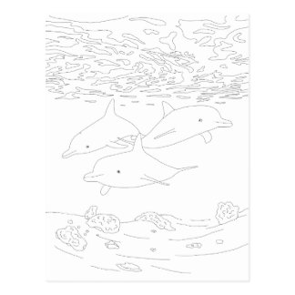 Dolphin Pod Adult Coloring Postcard