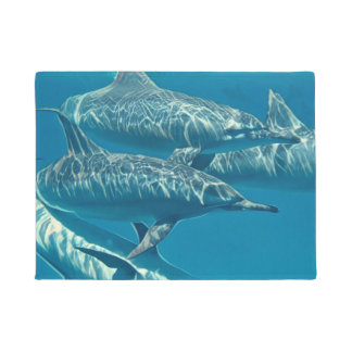 Dolphin Pod Painting Doormat