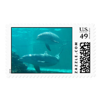 Dolphin Postage