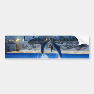 Dolphin Product Bumper Sticker