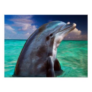 Dolphin Profile Poster