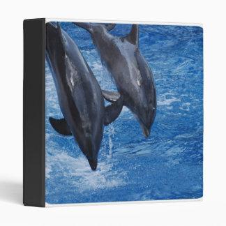 Dolphin Show Binder