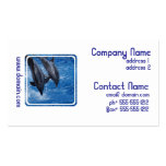 Dolphin Show Business Card