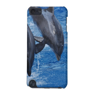 Dolphin Show  iPod Touch 5G Cover