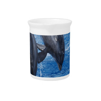 Dolphin Show Pitcher