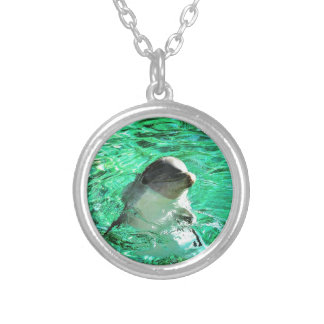 Dolphin! Silver Plated Necklace