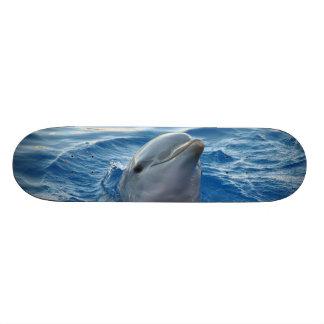Dolphin Skateboard Deck