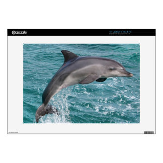 DOLPHIN LAPTOP SKINS