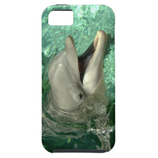Dolphin Smile iPhone SE/5/5s Case