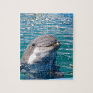 Dolphin Smile Jigsaw Puzzle