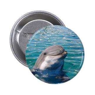 Dolphin Smile Pinback Button