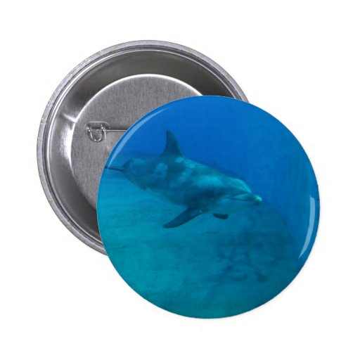 Dolphin Smiles Buttons