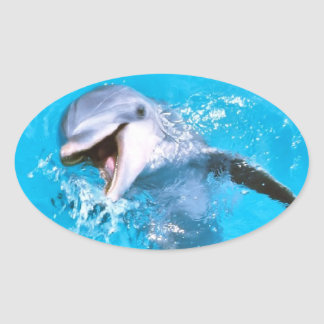 Dolphin Smiling 2 Oval Sticker