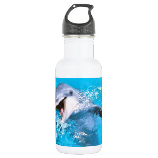 Dolphin Smiling 2 Stainless Steel Water Bottle