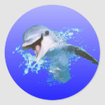Dolphin Smiling Classic Round Sticker