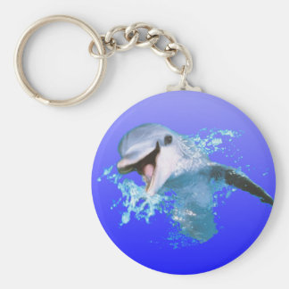 Dolphin Smiling Key Chains