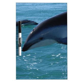 Dolphin Splash Destiny Beach Ocean Nature Dry Erase Whiteboards