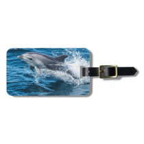 Dolphin Splashing Luggage Tag