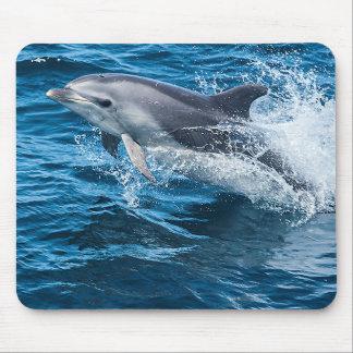 Dolphin Splashing Mouse Pad