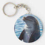 dolphin stand keychains