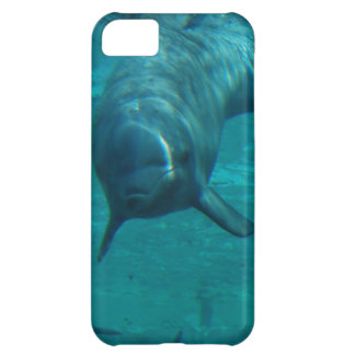 Dolphin Star iPhone 5C Covers
