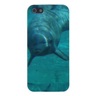 Dolphin Star Case For iPhone 5