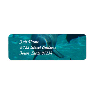 Dolphin Star Mailing Labels