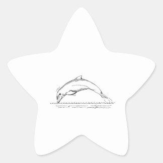 Dolphin Star Sticker