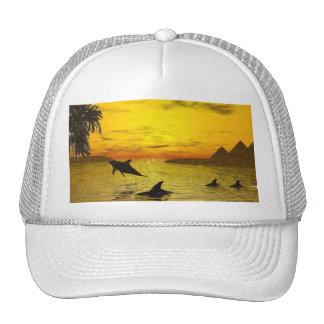 Dolphin Sunset Hat