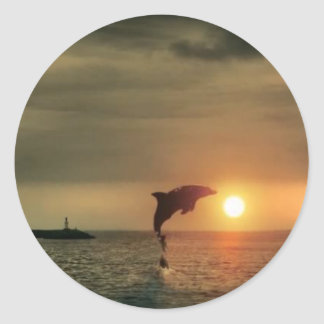 Dolphin Sunset - Round Sticker