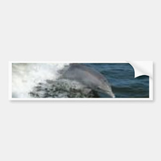 Dolphin Surfing Bumper Sticker