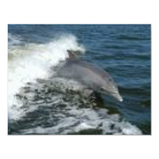 Dolphin Surfing 4.25x5.5 Paper Invitation Card