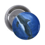 Dolphin Swimming Buttons
