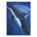 Dolphin Swimming Cards