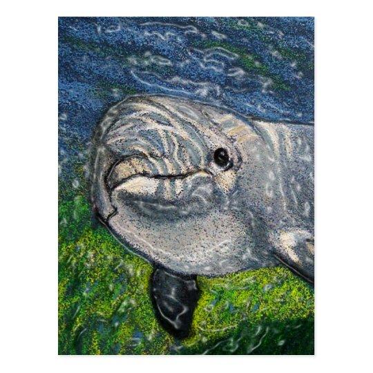 Dolphin Swimming Under Water: Dappled Sunlight Postcard