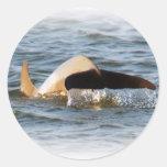 Dolphin Tail Classic Round Sticker
