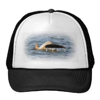 Dolphin Tail Mesh Hat