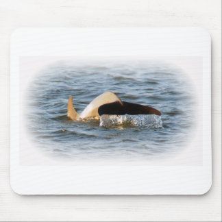 Dolphin Tail Mouse Pad