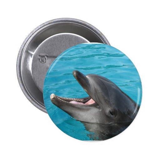 Dolphin Talk Pin